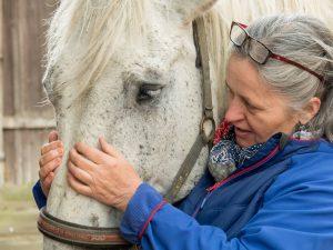 Dr. Elke Weisensteiner